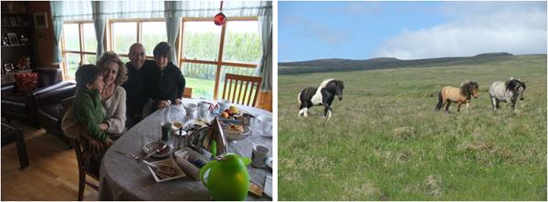 Granja_familia_Icelandic_Farm_House_HostelBookings_PintandoUnaMama