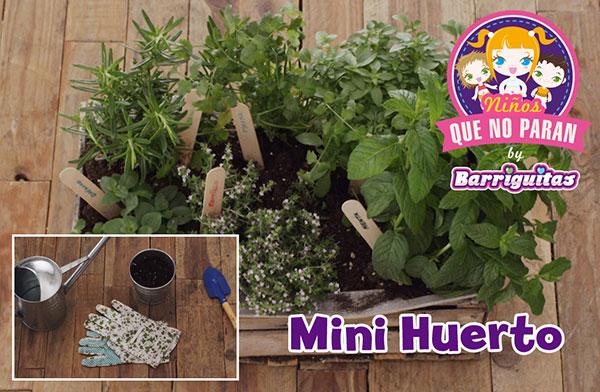 video_proyecto_minihuerto_v5