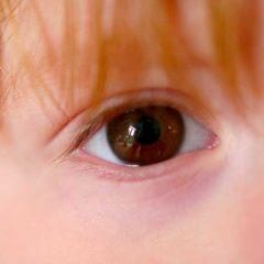 5 Medidas de Seguridad en Internet y Redes Sociales con los Niños